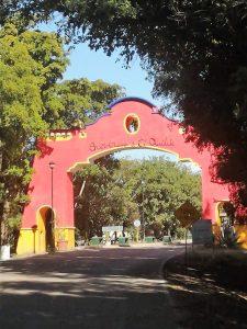 Zona Trópico Sinaloa mÉXICO 2020 5
