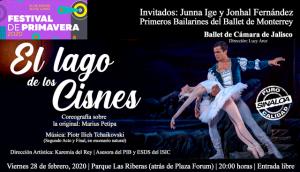 Banner web Ballet El lago de los cisnes, el 28 de febrero