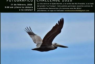 """Mazatlán será otra vez sede del """"City Nature Challenge"""""""
