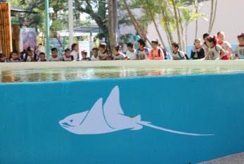 Premian a escolares con visita a Acuario Mazatlán