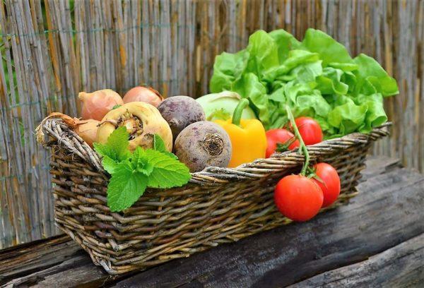 Agricultores Sinaloenses Protegen la Salud ante Covid-19 1