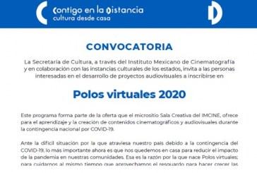 Polos virtuales 2020