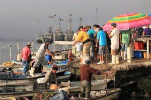 Llamado a Prestar Orientación a Puesteros del Mercado de Mariscos del Muelle de la Isla de la Piedra de Mazatlán Covid- 19 2020 (2)