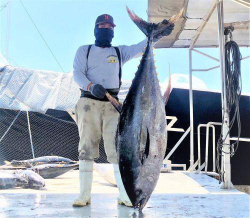 Pesca Azteca Apoya Asilo de Ancianos La Imaculada de Mazatlán por Covid - 19 2020 2 (3)