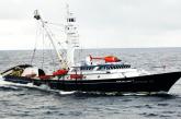 Termina la veda e inicia la temporada de pesca de atún