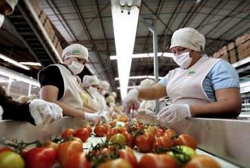 Sinaloa, 9° lugar nacional en crecimiento económico