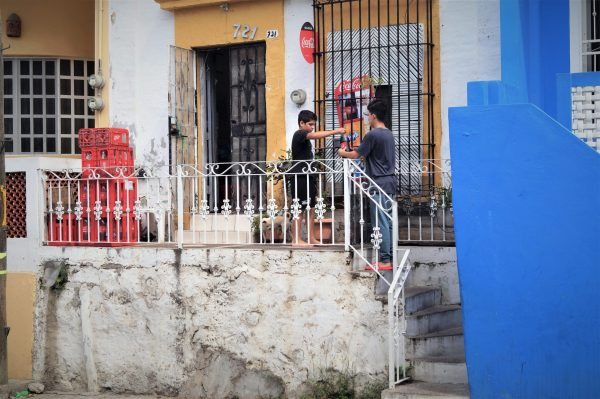 Surtiendo la Coca Desde mi Ventana Mazatlán Sinaloa México Zona Trópico Abril 8 de 2020
