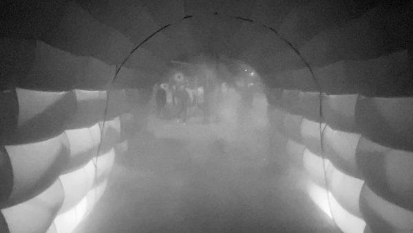 Túneles Sanitarios Riesgo de Salud COEPRIS 2020 1