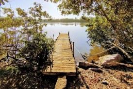 Estero del Infiernillo: Maravilla Natural que Reclama Atención