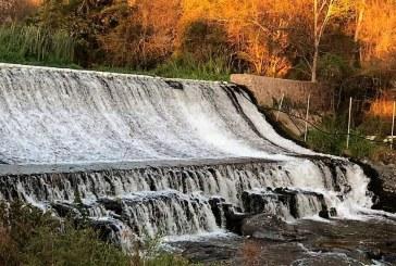 En Elota Fortalecen la Producción de Alevines en la Presa el Salto y con ello se beneficia el Turismo y Pesca