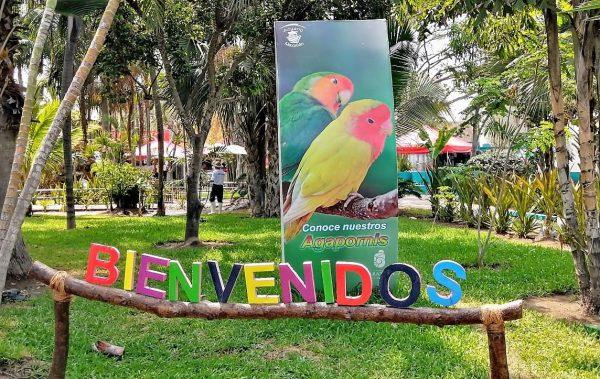 Acuario Mazatlán Reabre sus Puertas el 2 de Julio de 2020 2