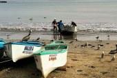 En Mazatlán Inspiramos Confianza: Pescadores de Playa Norte