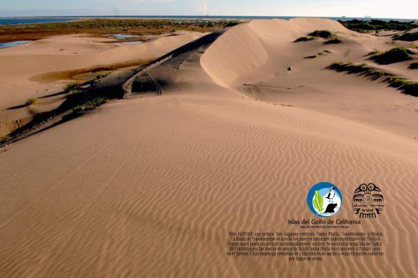 ExpoFoto Día Mundial del Medio Ambiente Mazatlán 2020 Salvador Herrera Conamp (11)