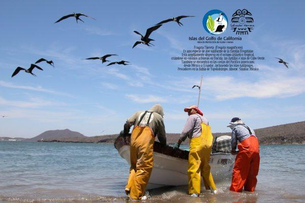 ExpoFoto Día Mundial del Medio Ambiente Mazatlán 2020 Salvador Herrera Conamp (9)