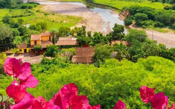 OMT Directrices Apertur del Turismo 2020 Covid - 19