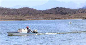 Pesca Ilegal No Reglamentada 2020 1