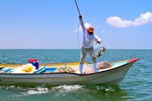 Pesca Ilegal No Reglamentada 2020