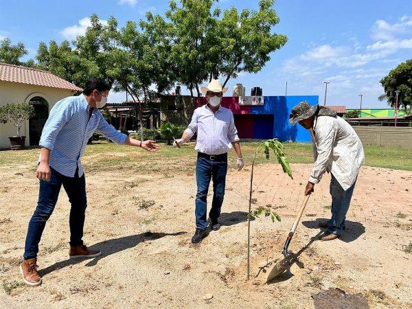 Sedesu y Agricultores Celebran Día Mundial del Medio Ambiente 2020