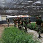SEDESU y Jardín Botánico Culiacán invitan a adoptar un árbol