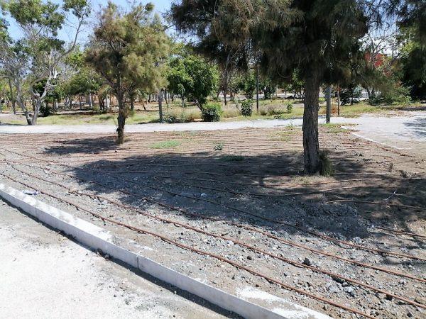 Avance de 85 por Ciento en Parque Central de Mazatlán 2020 Julio (3)