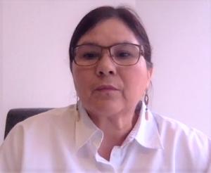 Imelda Castro Sinaloa