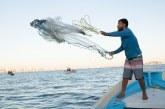 Más de 32 mil jóvenes pescadores y trabajadores acuícolas fueron beneficiados con el Bienpesca