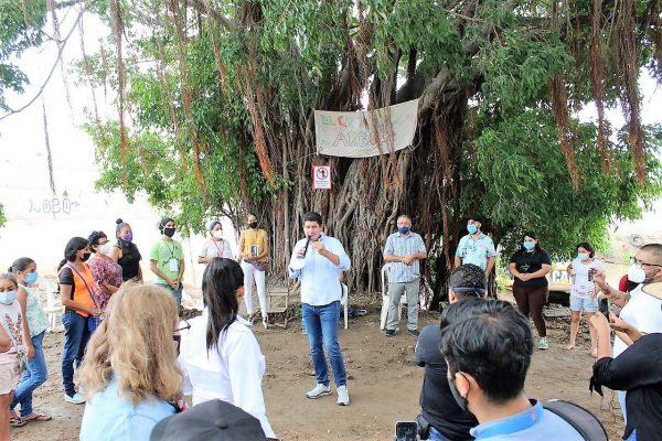 El Gran Árbol de Mazatlán en Jacarandas el Gran Ejemplo a Seguir 2020 6