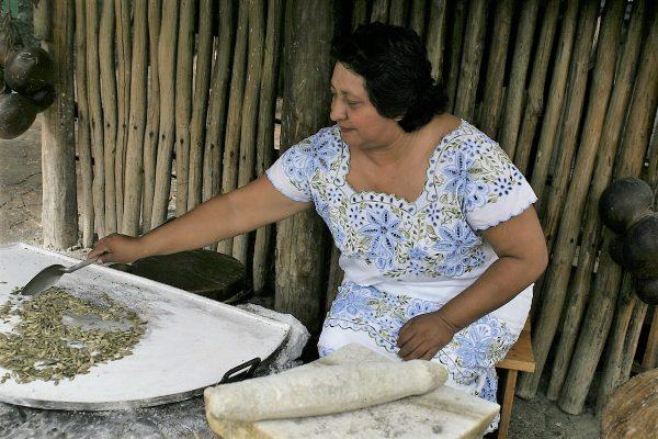 IX Reunión Virtual Nacional de Información del Conservatorio de la Cultura Gastronómica Mexicana 2020 (3)