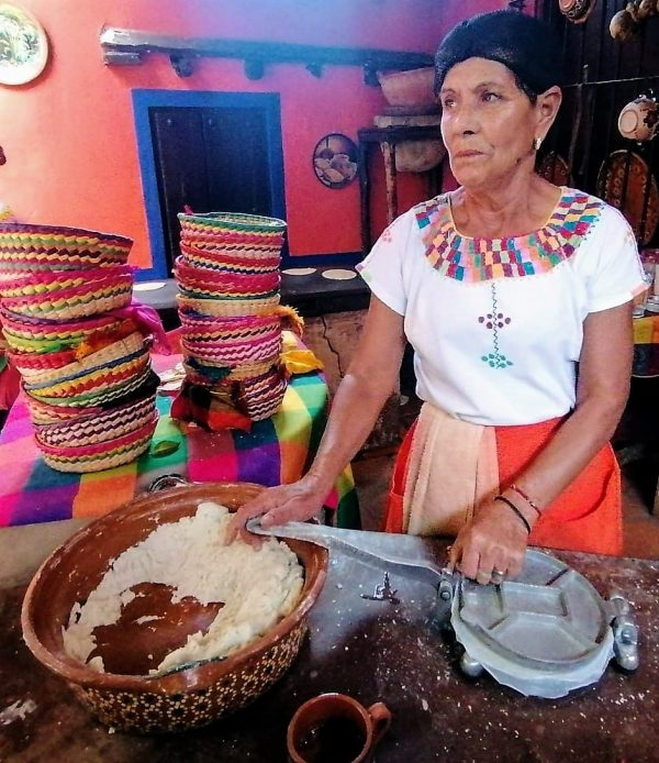 IX Reunión Virtual Nacional de Información del Conservatorio de la Cultura Gastronómica Mexicana 2020 (4)