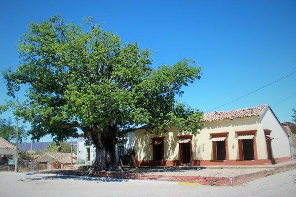 San Juan Zona Trópico San Ignacio Sinaloa México 3