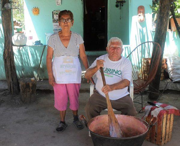 San Juan Zona Trópico San Ignacio Sinaloa México 4