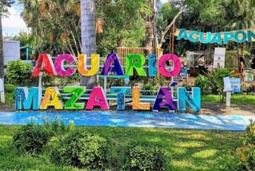 40 Aniversario de Acuario Mazatlán: El Ocaso de un Patrimonio Mazatleco