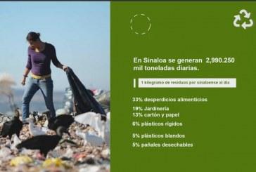 Jóvenes de IMEF Universitarios-UAS se suman a la Agenda Sustentable de Sinaloa