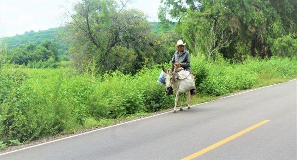 El Quelite Caso de Éxito en Turismo Rural en Latinoamérica 2020 (2)