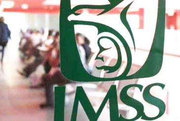 Reporta el IMSS la cifra de empleo para Sinaloa en Agosto