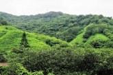 El turismo rural es el gran complemento para los grandes destinos: Óscar Pérez Barros