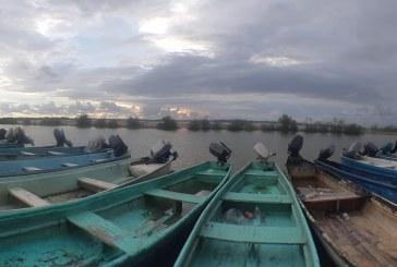 Inician capturas de camarón en los campos pesqueros del sur de Sinaloa