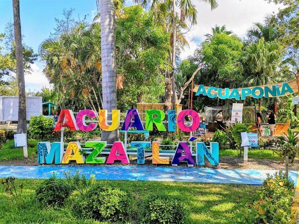 Acuario Mazatlán en las Preferencias de los Visitantes 2020 5