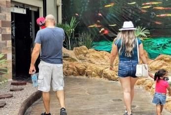 Acuario Mazatlán continúa en la preferencia de los turistas