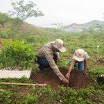 Eligen a ganadores del premio Mérito Ecológico Sinaloa 2020