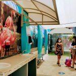 Galería de Fotos Acuario Mazatlán Octubre 2020 (10)
