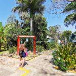 Galería de Fotos Acuario Mazatlán Octubre 2020 (11)