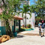 Galería de Fotos Acuario Mazatlán Octubre 2020 (2)