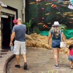 Galería de Fotos Acuario Mazatlán Octubre 2020 (7)