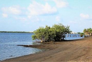 Las Águilas, Navolato, ya es Playa Limpia