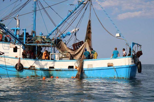 Primer Reporte de la Zafra de Camarón 2020-2021 Pacífico (4)