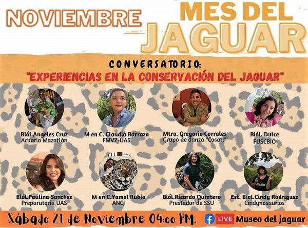 Conservatorio Jaguar de Sinaloa Mes Internacional Museo del Jaguar Cabazán 2020