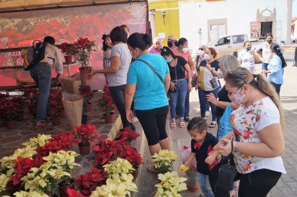 Feria de la Flores de Noche Buena Concordia Sinaloa México Zona Trópico La Petaca 2020 4