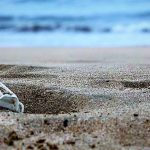 La Iniciativa Mundial Sobre Turismo y Plásticos de la Bienvenida a 25 Nuevo Signatarios