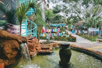 Así es Acuario Mazatlán